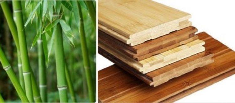 Bambus parket