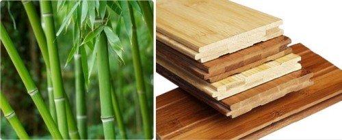 bambus-parket1